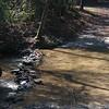 Pretty stream near the cabin