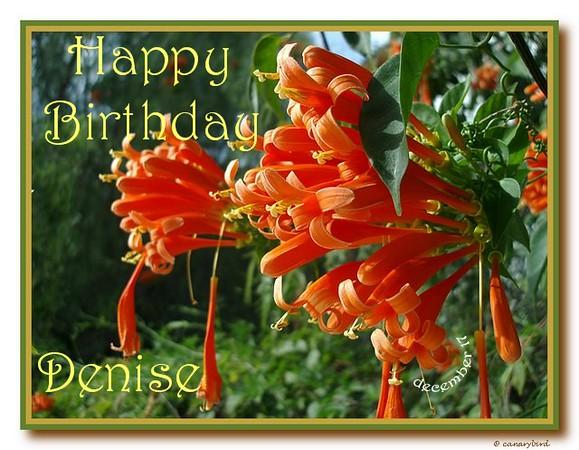 HB Denise