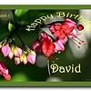 Happy Birthday Lakeguy (David)