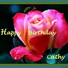 HB Cathy