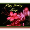 HB Nancy