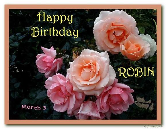 HB Robin
