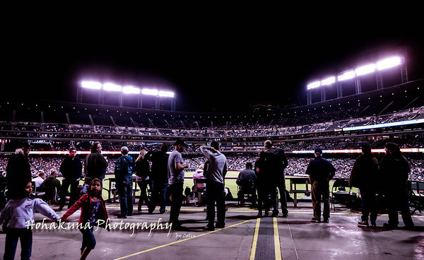 Crowd shot in Coors Park. I love the shadows and the dynamism of the fans in the picture.