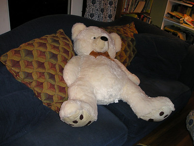 Big old teddy waiting in the living room.