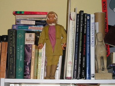 Don't you love looking at other people's bookcases?
