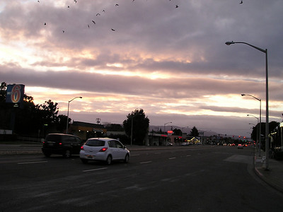 Sunset over El Camino Real. With crows.