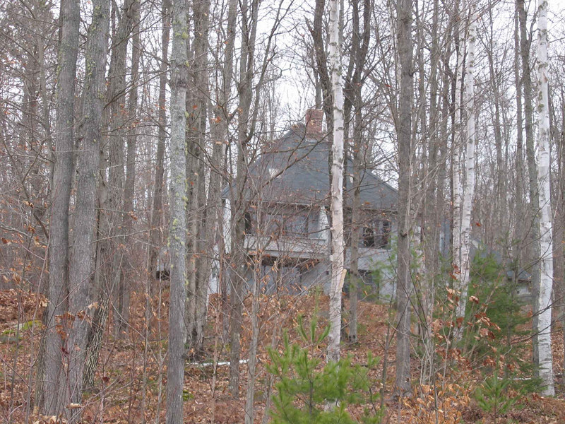 this is your neighbors house directly across the road- probably cant't see it when leaves are up- pretty awesome house-buy this one!!!