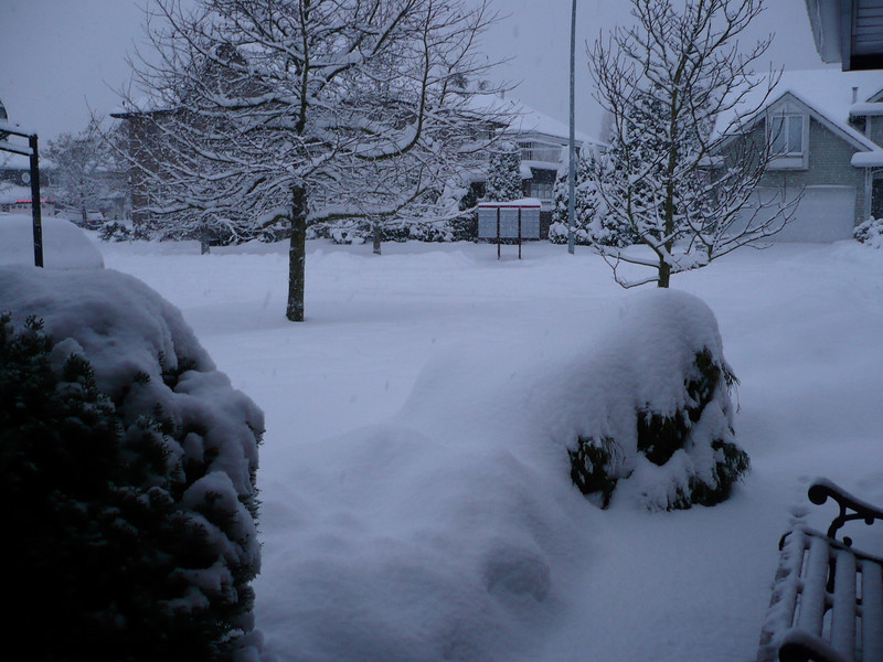 Looking from front door on Dec 24th