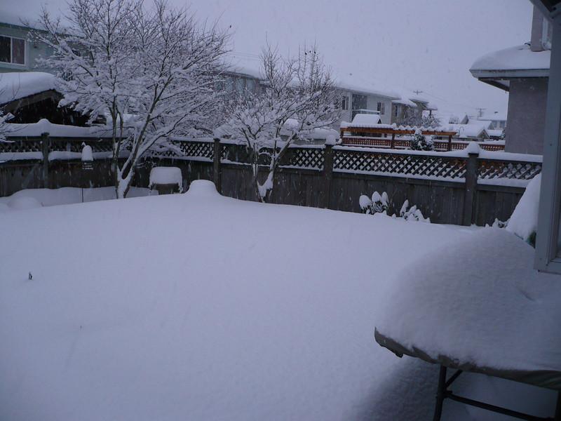 Back deck ?? in yard
