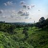 UPM land