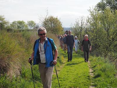 Cabrières walk April 2016
