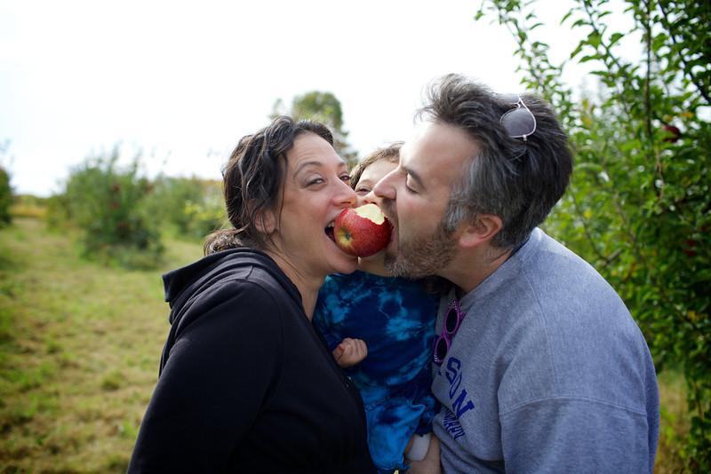 Apple Picking 13