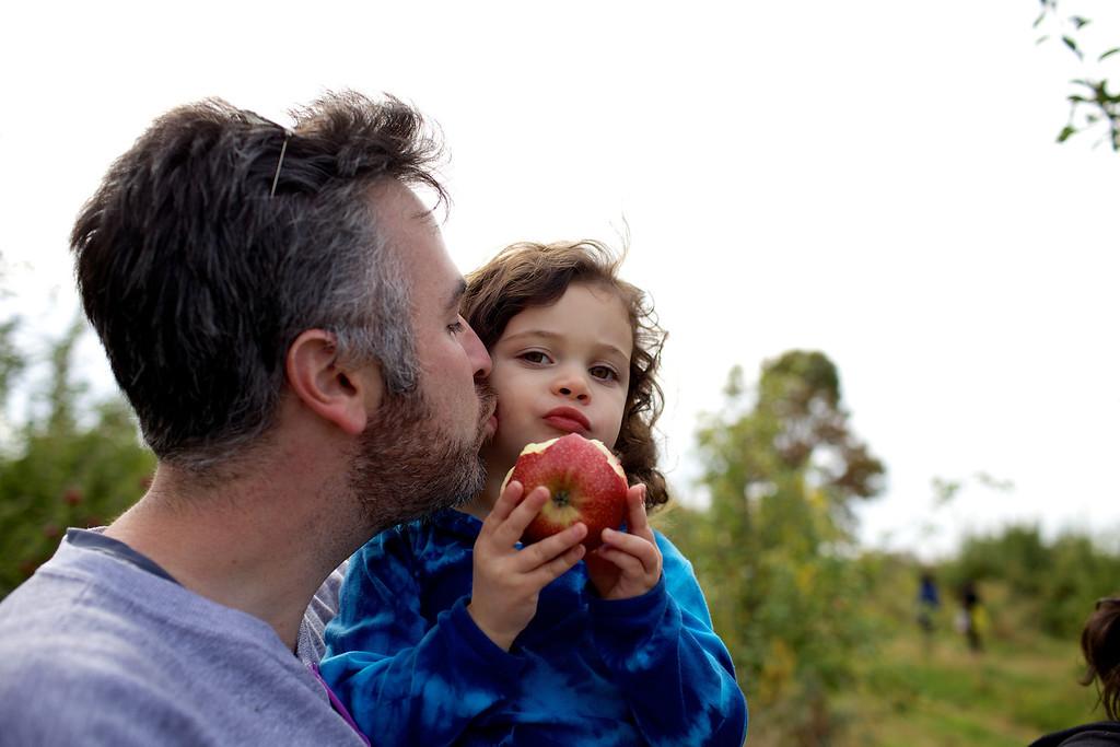 Apple Picking 14