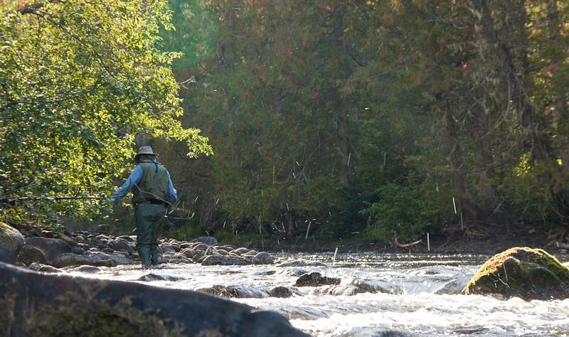 Bayard Navigates Upstream