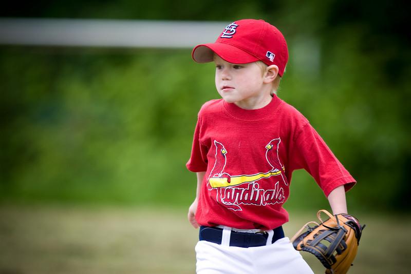20080531-Cardinals-087-7724