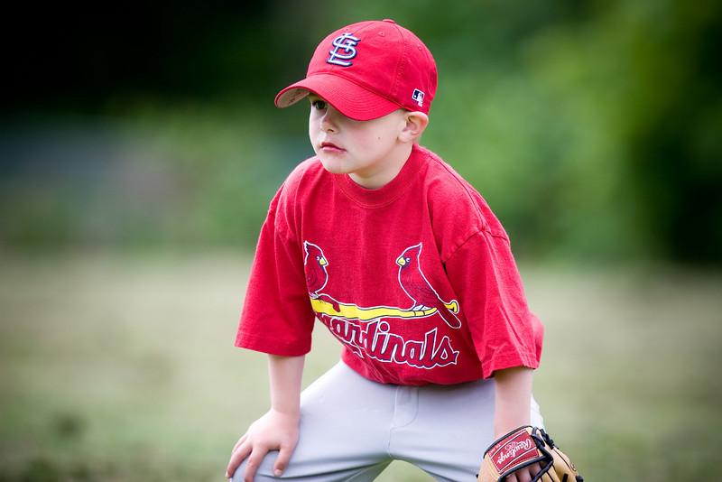 20080531-Cardinals-086-7721
