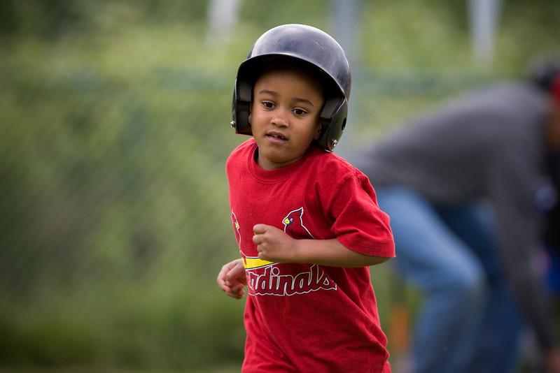 20080531-Cardinals-059-7602