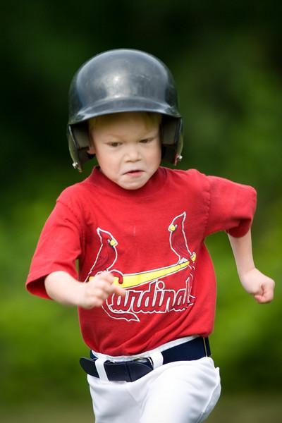 20080531-Cardinals-031-7476