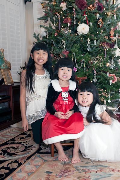 Chin Christmas 2013