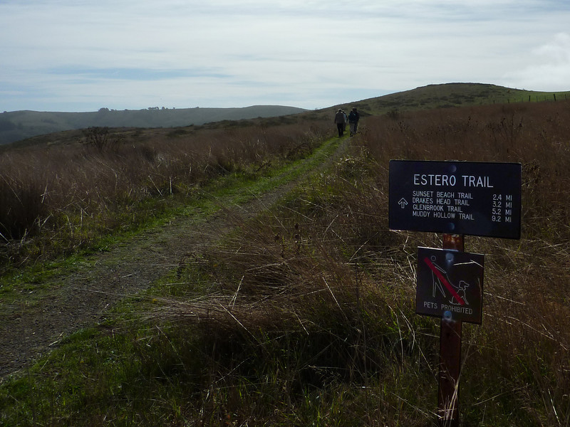 Estero Trail, Point Reyes