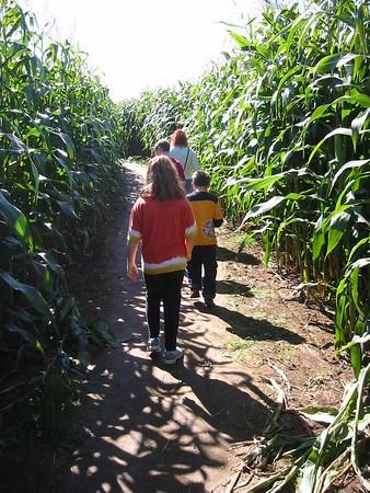 Corn Maze - Truro 2005
