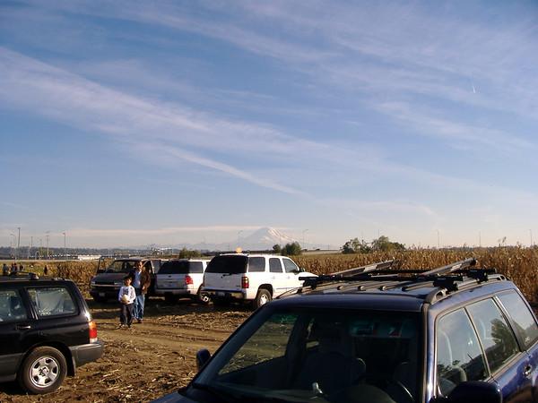 Corn maze & pumpkin patch