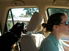 Kaitlin driving with Scout as passenger