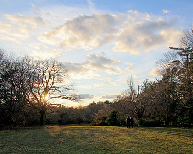 Sunset with couple at Planting Fields Arboretum.
