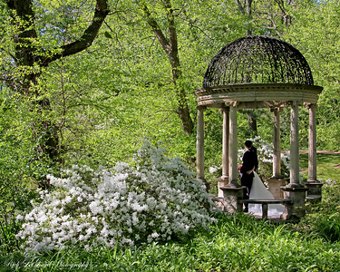 Temple of Love at Old Westbury Gardens. Young couple there for Wedding photos.