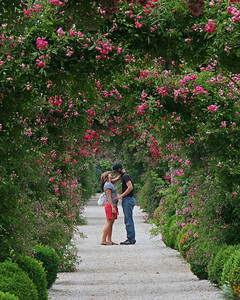 Couple at Planting Fields Arboretum