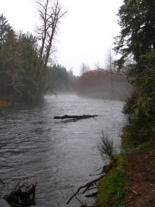 Bridge Pool looking upstream
