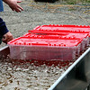THE AERATION TUB - USED AS THE FISH COME IN BEFORE THEY GET WEIGHT IN. AFTER THE WEIGHT IN THE FISH ARE SENT BACK INTO THE RIVER OR LAKE SO THEY NEED TO BE KEPT IN THEIR PROPER ENVIRONMENT.