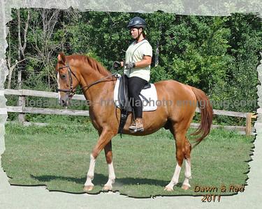 Dawn & JIll Horses
