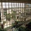 Site of the '96 Dallas Convention