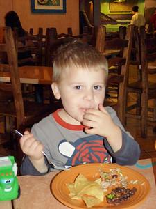Joey enjoying dinner