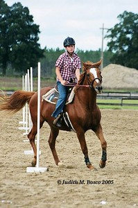 Ginger, a mare of many talents!! She did not go very fast, but she did it in pretty good form considering she had never done pole bending before!
