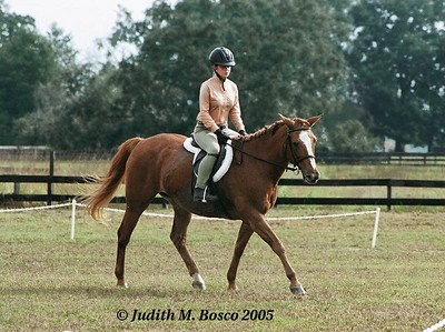 A friend of Christina's riding her aged mare Ginger. I just found out this evening that Ginger passed away today.  My heartfelt condolences to Christina and Donna. She will be missed greatly.