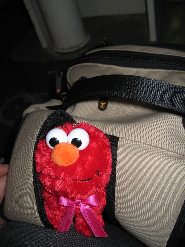 Elmo finds the backpack is heavy
