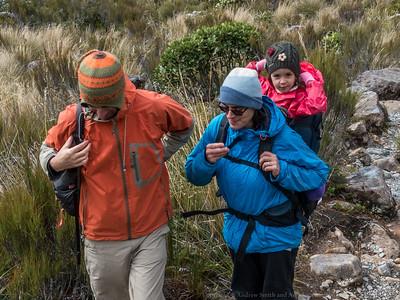 Starting the Otira Valley Walking Track.