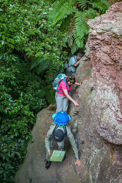 Carefully traversing on a narrow ledge on the top of the bottom cliff line.  The tree tops hide the drop below.