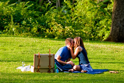 Engagement Picnic