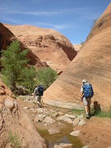 Start of the long winding route to Lake Powell.