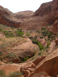 Up-canyon meanders as seem from underneath Broken Bow Arch.
