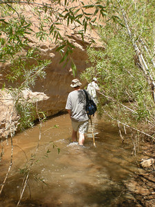 Where Willow Creek meets Lake Powell.  To the left of Mark, you can see the stream's final flow, but where Mark stands is essentially standing water.  End of the line for Willow Gulch.
