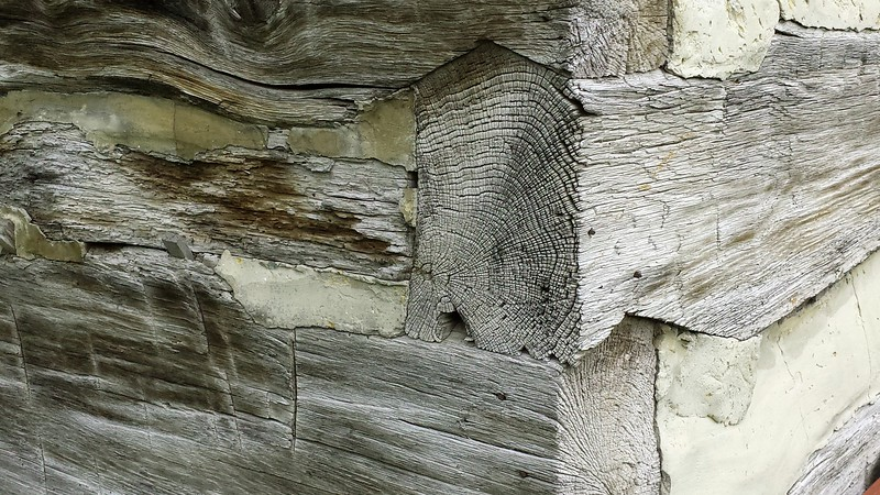 Detail of Outbuilding - Quiet Valley Farm