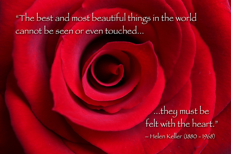 """Red rose blossom close-up with quote by Helen Keller: """"The best and most beautiful things in the world cannot be seen or even touched, they must be felt with the heart."""" -- Helen Keller (1880 - 1968). You may freely download and use this image if you give copyright credit to """"Royce Bair"""" and give a link to """"www.RoyceBair.com"""" -- no commercial use without permission (This <a href=""""http://creativecommons.org/about/licenses/"""">Creative Commons License</a> is called an """"Attribution Non-Commercial No Derivatives"""" license.)  Prints may be ordered here on SmugMug by clicking on the """"Buy"""" or shopping cart button."""