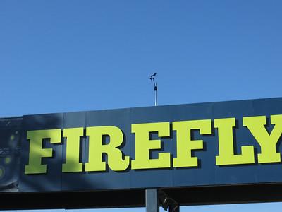 Firefly Fest July 2013