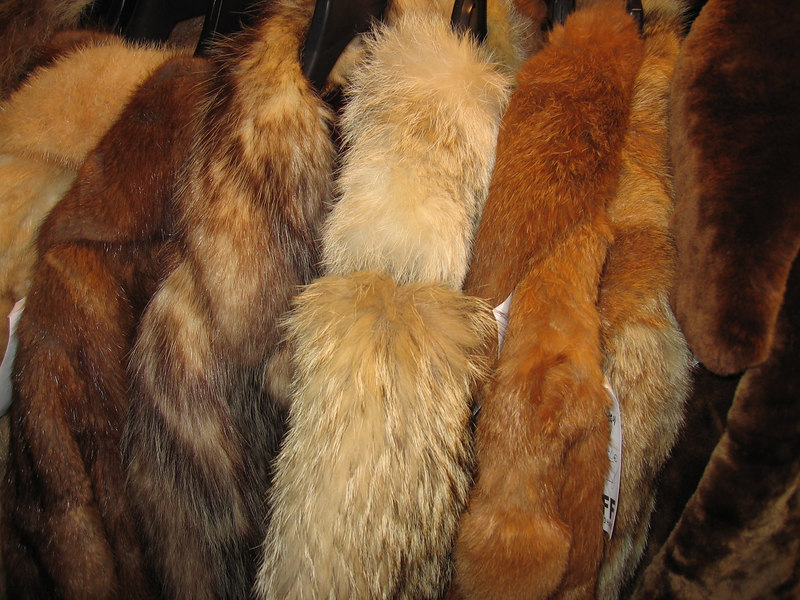 A small selection of fur on sale at UFF the cool second hand shop
