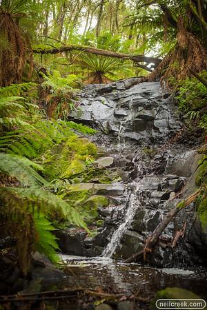 creek160313-044