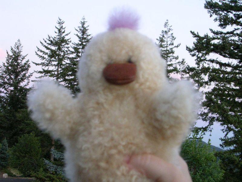 Lavander Warrior Duck: Yiiiiiiiiiiyi!